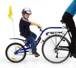 Bicycle appendix