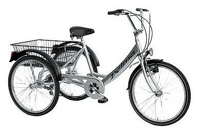 Unisex adult tricycle