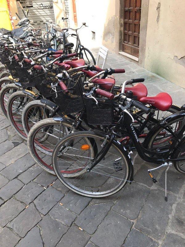 City Bike and Cruiser Bike