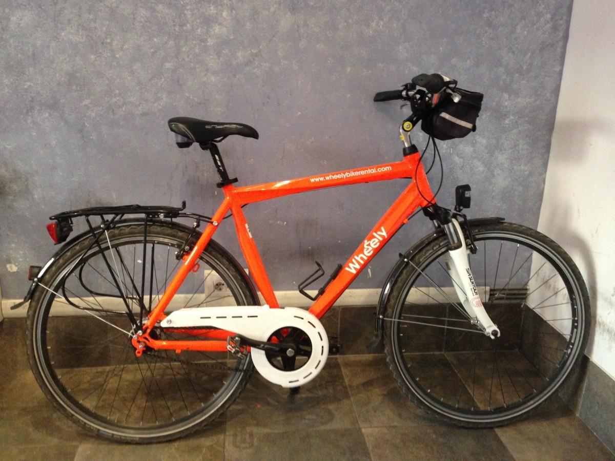 Trekking Bike for men