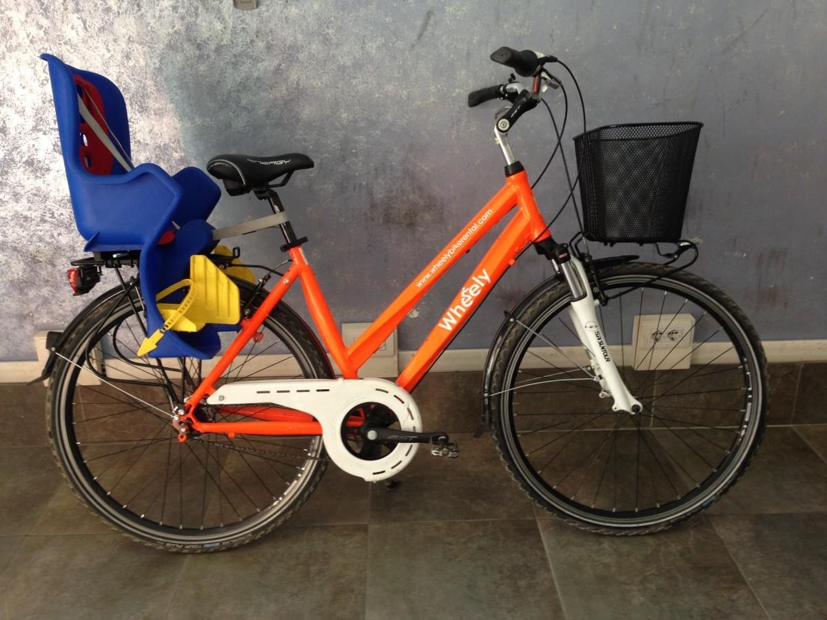 Trekking bike with child seat